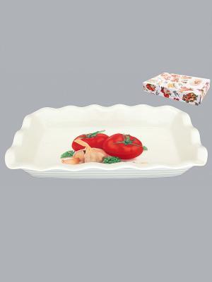 Блюдо для заливного Помидоры Elan Gallery. Цвет: белый, зеленый, красный