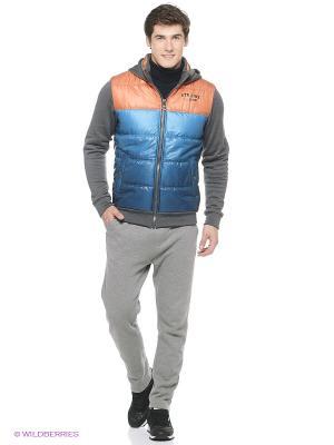 Куртка Stayer. Цвет: синий, серый, оранжевый