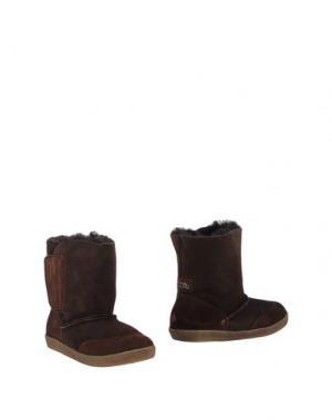 Полусапоги и высокие ботинки FALCOTTO. Цвет: темно-коричневый