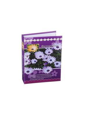 Фотоальбом на 200 фото 10х15см, 17,5х23см, бумага, пластик, KONONO. Цвет: фиолетовый