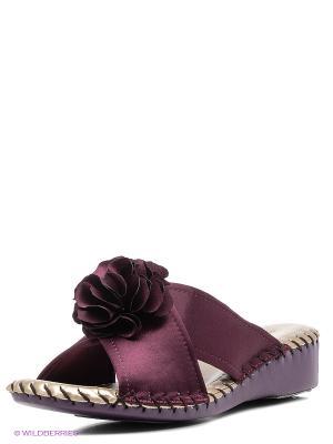 Тапочки Pansy. Цвет: темно-фиолетовый