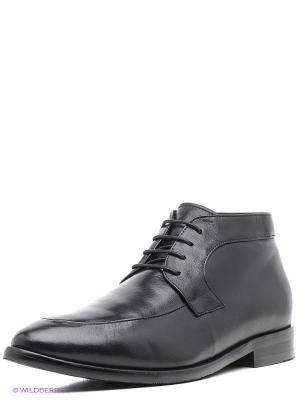Ботинки JUST COUTURE. Цвет: черный