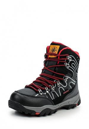 Ботинки трекинговые Kakadu. Цвет: черный