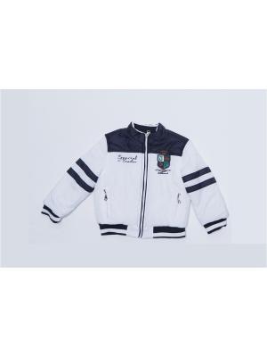 Куртка для мальчиков Pilota. Цвет: белый, синий