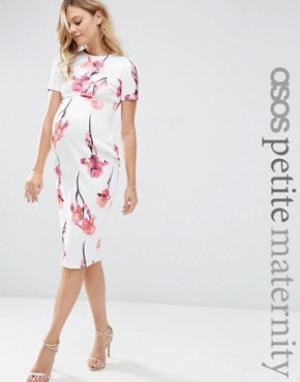 ASOS Maternity Платье-футляр для беременных с красным цветочным принтом Maternit. Цвет: мульти
