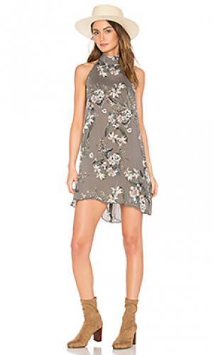 Короткое платье biya Cleobella. Цвет: серый