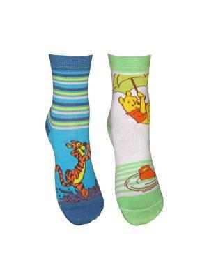 Носки 2 пары Master Socks. Цвет: бирюзовый, белый