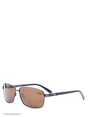 Солнцезащитные очки Legna. Цвет: коричневый, темно-синий