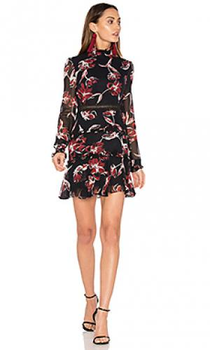 French floral dress NICHOLAS. Цвет: черный