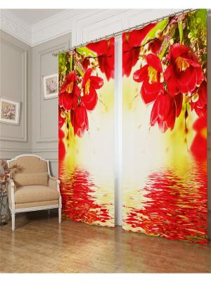 Фотошторы Букет с красными цветами, Блэкаут Сирень. Цвет: красный, зеленый, оранжевый