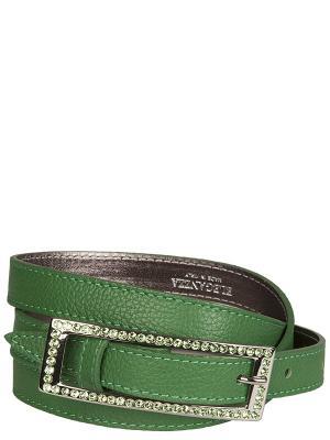 Ремень Eleganzza. Цвет: темно-зеленый