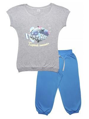 Комплект женский (футболка, бриджи) Family Colors. Цвет: серый меланж