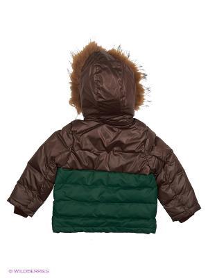 Куртка Сева Аксарт. Цвет: зеленый, темно-коричневый