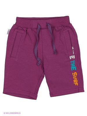 Шорты БЕМБI. Цвет: фиолетовый