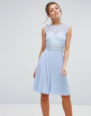 Elise Ryan Платье миди с кружевным лифом и вырезом сердечком. Цвет: синий