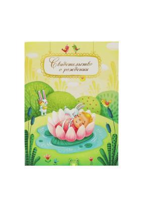 Авторская обложка для свидетельства о рождении Принцесса Лилия Dream Service. Цвет: бирюзовый, золотистый, розовый