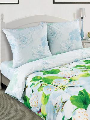 Постельное белье Арт Постель. Цвет: голубой, зеленый