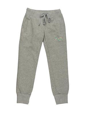 Спортивные штаны DAMY-M. Цвет: серый
