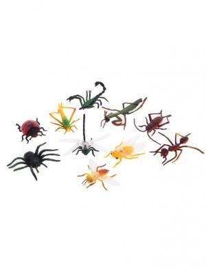 Набор насекомых, 10 штук Радужки. Цвет: черный, желтый, зеленый