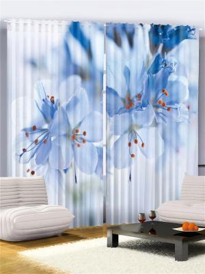 Комплект фотоштор из полиэстера высокой плотности Нежные голубые цветы, 290*265 см Magic Lady. Цвет: белый, голубой