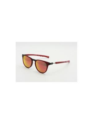 Солнцезащитные очки CX 809 BU CEO-V. Цвет: красный
