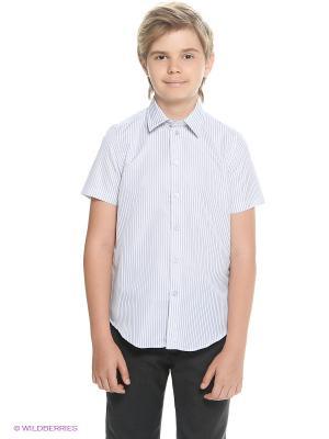 Рубашка Button Blue. Цвет: голубой