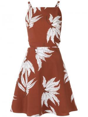 Printed dress Andrea Marques. Цвет: коричневый