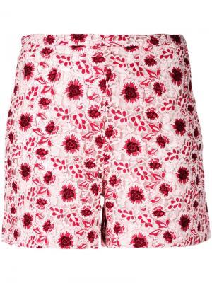 Вышитые шорты Giambattista Valli. Цвет: розовый и фиолетовый