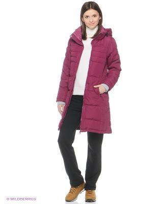 Куртка Trespass. Цвет: фиолетовый