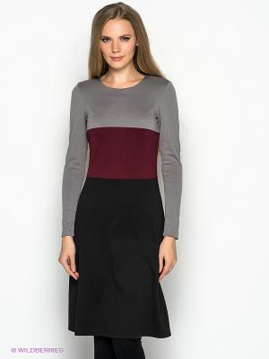 Платье DOCTOR E. Цвет: черный, серый, бордовый