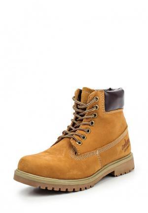 Ботинки Coolway. Цвет: коричневый