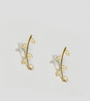 Kingsley Ryan Позолоченные серьги-клаймберы. Цвет: золотой