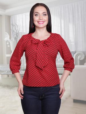 Блузка CHARUTTI