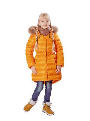 Пальто G'n'K. Цвет: оранжевый