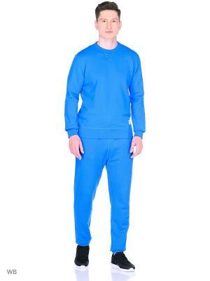 Брюки Knitted Mens pant Converse. Цвет: синий