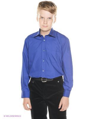 Рубашка Cascatto. Цвет: синий