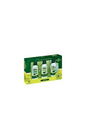 Герболив подарочный набор №2 Madis S.A.. Цвет: оливковый