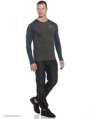 Брюки WINDFLEECE P Adidas. Цвет: черный