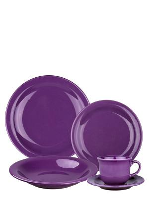Набор столовый Пурпур Biona. Цвет: фиолетовый