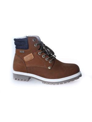Ботинки Patrol. Цвет: серо-коричневый