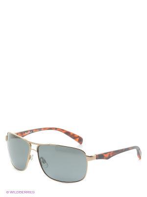 Солнцезащитные очки MS 04-004 07 Mario Rossi. Цвет: черный, коричневый, золотистый