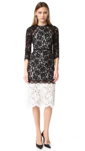 Платье Whitney Alexis. Цвет: черный/белый