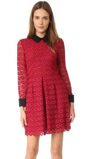 Кружевное платье Venice с воротником Jill Stuart. Цвет: смородина