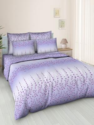 Комплект постельного белья Jardin. Цвет: фиолетовый