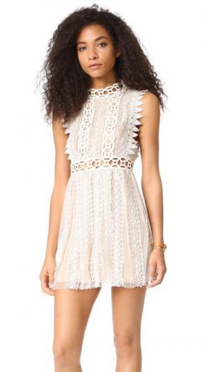 Кружевное платье-комбинация Forever Free People. Цвет: сапфир
