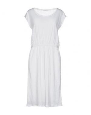 Платье до колена BELLA JONES. Цвет: белый