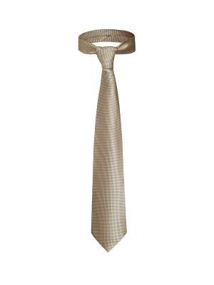 Классический галстук Поездка в Мюнхен с модным принтом Signature A.P.. Цвет: темно-бежевый