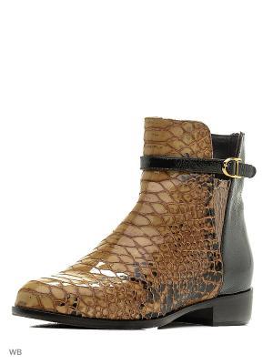 Ботинки DIBRERA. Цвет: коричневый