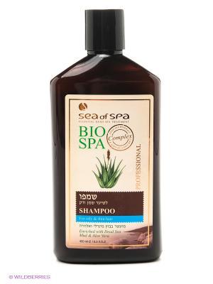Шампунь для жирных и тонких волос Sea of Spa. Цвет: коричневый