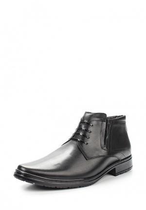 Ботинки классические Gassa. Цвет: черный